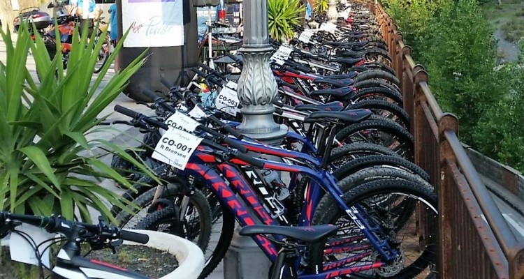 We rent up to 100 mountain bikes