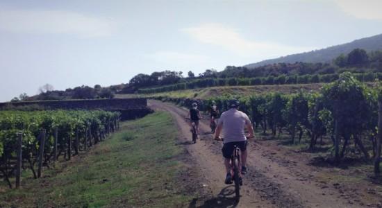 E-bike Wine Tour on Mount Etna