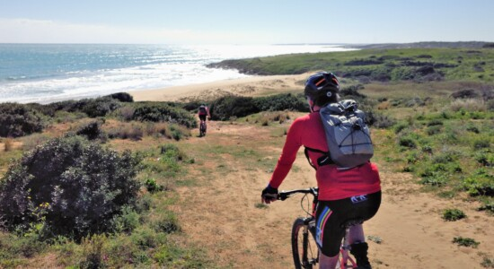Nature reserves and baroque bike tour